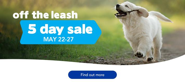 Subaru 5 Day Sale