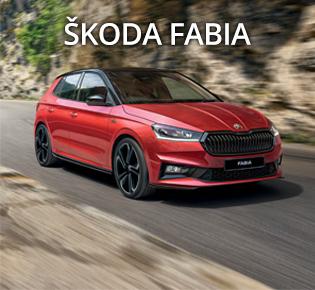 Skoda Fabia & Fabia Monte Carlo