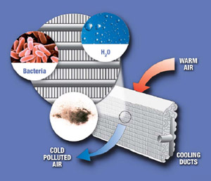 Air Conditioner Sanitisation Special